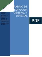 Trabajo de Pedagogia, conceptos principles, el rol del t.o.