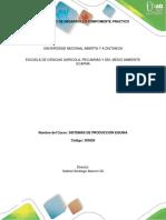 Protocolo Desarrollo Compomente Practico