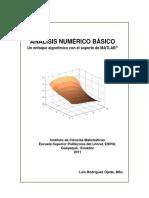 ANALISIS NUMERICO BASICO.pdf