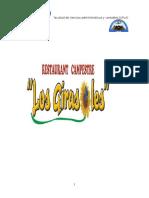 PLANDE DE MARK LOS GIRASOLES.docx
