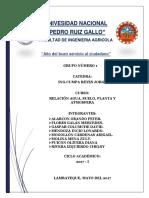 RASPA-practica 1.pdf