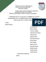 110870192-Proyecto-de-Servicio-Comunitario-12.doc
