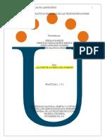 Informe Componente Practico Ingenieria de Las Telecomunicaciones UNAD