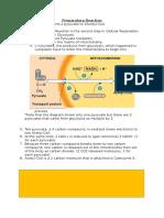 preparatory reaction-2