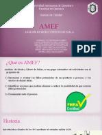 AMEF-mdf (1)