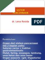 Ppt Histo Traktus Digestivus