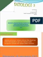 Hematologi 2 (2)
