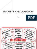 Budgets and Variances