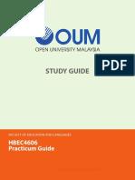 HBEC4606 Practicum Guide BECE CAug13
