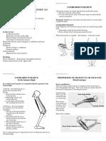 lec4bimuscle LOMBARD.pdf