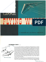 Facts About Flying Wings