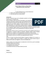 Producción de leche de soja y tofu.pdf