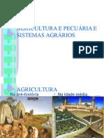 AGRICULTURA E PECUÁRIA E SISTEMAS AGRÁRIOS 1 fase.......ppt
