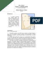 Relatório Sebrae-CE Alberto Vallim
