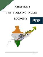 The Evolving Indian Economy