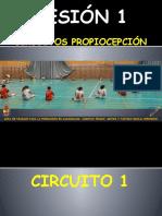 SESIÓN 1 circ 1_1