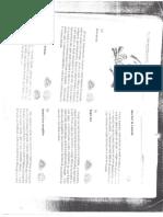 JOCURI pentru copii de la o zi la sase ani - partea  II (2).pdf