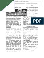 Atividade Avaliativa de Lingua Espanhola 1 Av Gabaritada