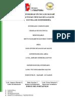 8.1 Informe Final Docencia Cnh