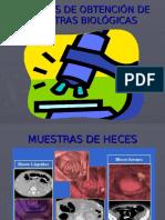 muestrasdeheces-091113195515-phpapp02
