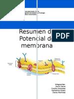 Resumen Potencial de membrana.docx