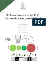 Neurociencia PUC 2017