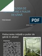 Tehnologia de Abatorizare a Puilor de Gaina
