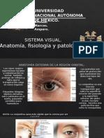 SISTEMA VISUAL. TODOS LOS DERECHOS RESERVADOS MARKS INC. CORPORATION..pptx