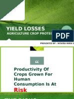 Seminar Kelas - Crop losses.pptx