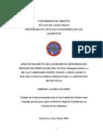 PGIQ009G30.pdf