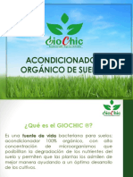 PPT GIOCHIC Comercial(1).pdf