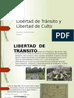 Libertad de Transito (5)