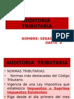 Auditoria Tributaria II