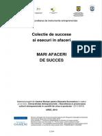 289068587-Mari-Afaceri-de-Succes.pdf