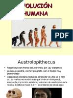 evolucion humano (1).pptx