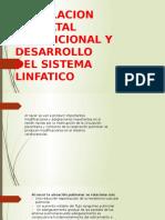 Sistema Cardiovascular Circulacion Neonatal Transicional y Desarrollo Sistema Linfatico