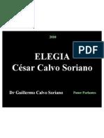 Elegia - Poema Canción de César Calvo