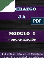 Manual de Liderazgo - Modulo 1 ORGANIZACION.pdf