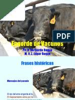 Engorde de Vacunos