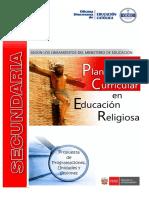 Planificacion Curricular Re.