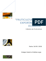 Fruti exportacion