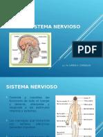 4 NEURONA Sistema_nervioso