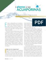 Acuaporinas.pdf