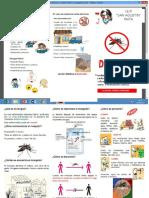 Trptico Dengue