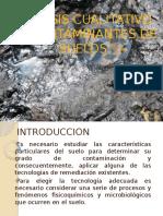 Analisis Cualitativo de Contaminantes de Suelos
