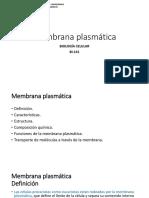 3.a. Membrana Plasmática