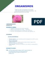 MICROORGANISMOS ANITA.docx