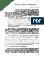 Marzal, Manuel María - Indigenismo y Constitución