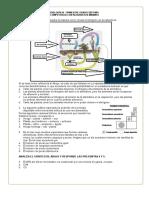 3.4-COMPETENCIA-SÉPTIMO-BIOLOGÍA-TRIM- III.docx