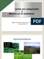 Clase 5 Contaminación Por Plaguicidas